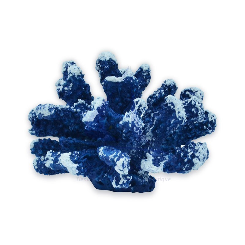 Blue & white Resin coral