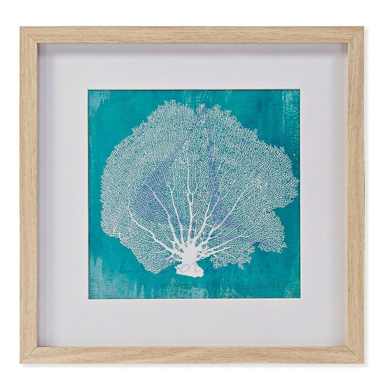 Cuadro gorgonia blanca sobre fondo turquesa